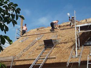 2 Dachdrcker ein Ferienhelfer